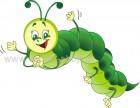 Έντομο 72