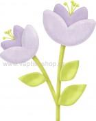 Φυτό 12