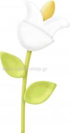 Φυτό 16