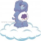 Care Bear 13