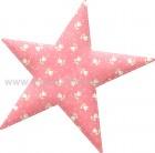Αστέρι Ροζ με Λουλούδια