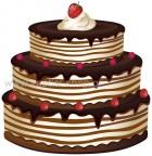 τούρτα γενεθλίων 12